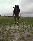 Man hiking in marsh