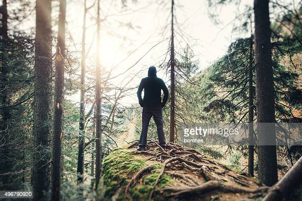男性では、森林のハイキング
