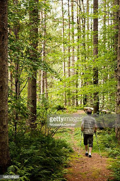 Man hiking into a northern forest clearing