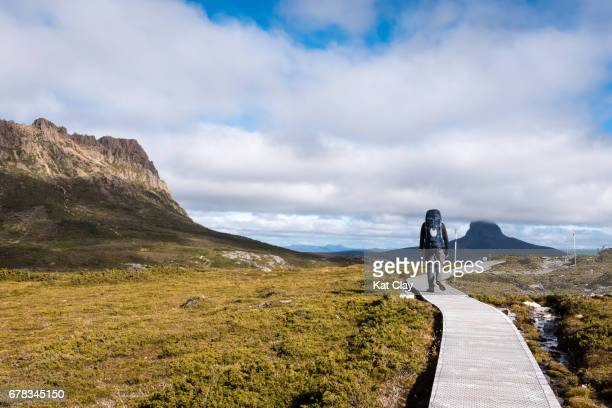 Man hiking the Overland Track
