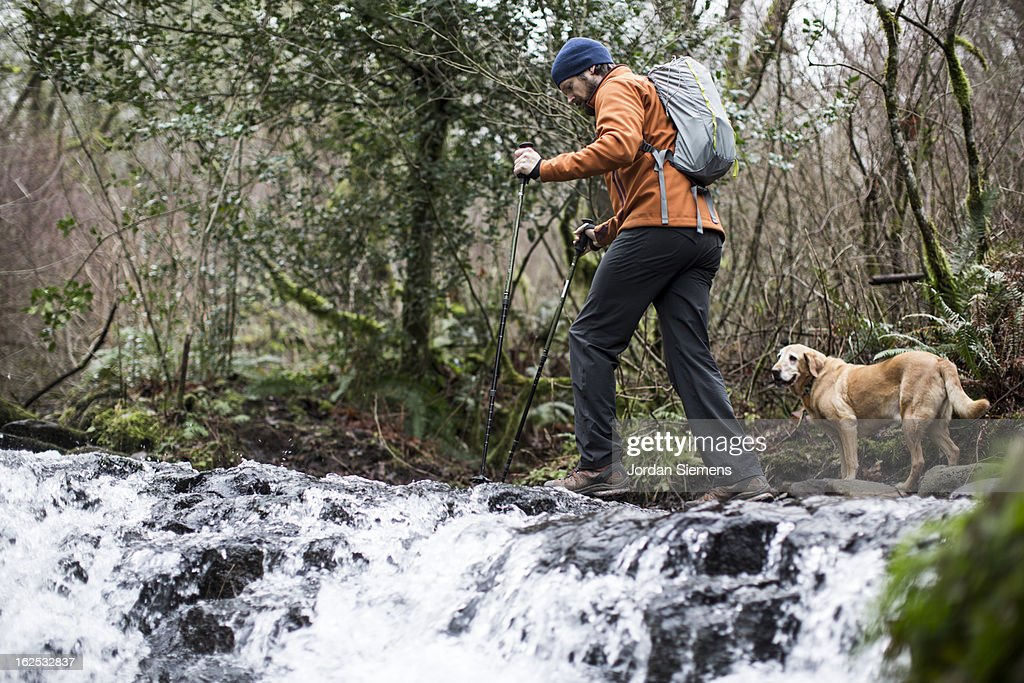 A man hiking with his dog. : Stock Photo