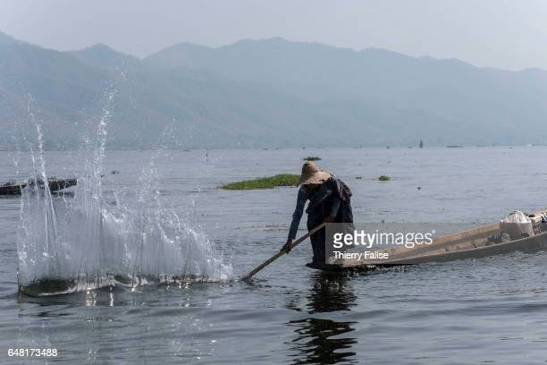 A man hits the water on the Inle Lake to force the fish to come out of hiding in subwater algae