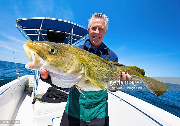 A man holding a fresh caught cod fish