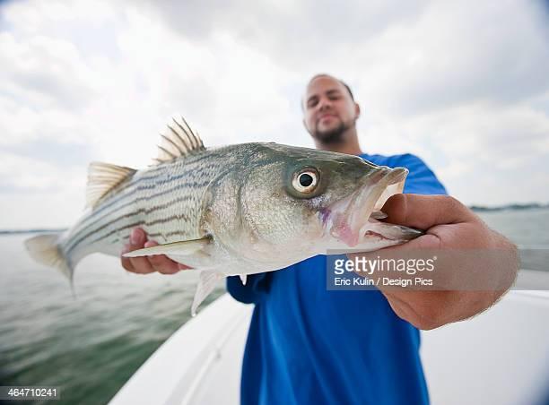 A man holding a fresh caught striped bass