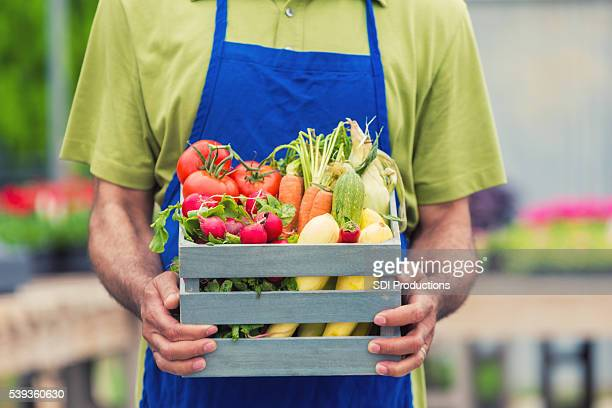 Man holding basket full of fresh summer vegetables