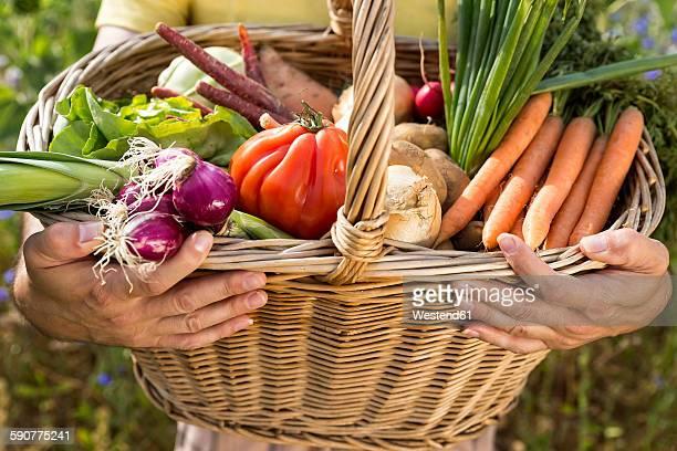 Man holding basket full of organic vegetables