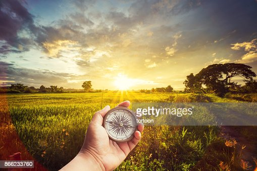 A man holding compass on hand at field and sunset for navigation guide. : Stock Photo