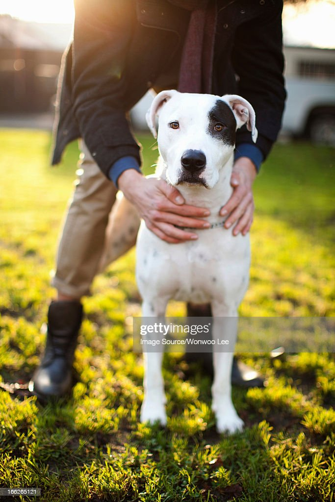 Man holding dog in park : Stock Photo