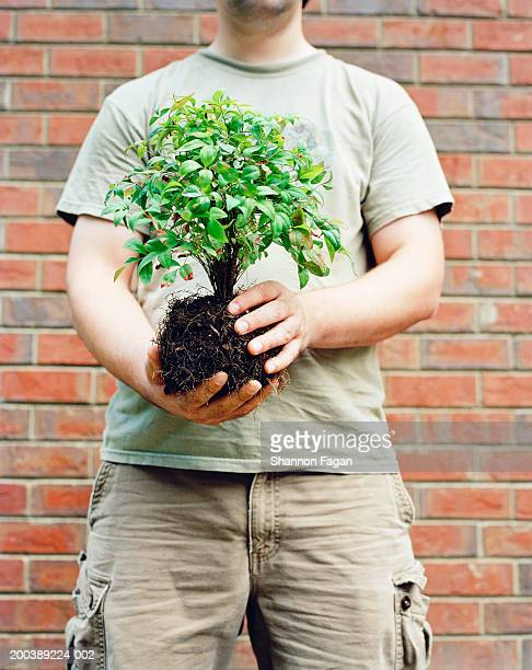 Man holding plant, mid section