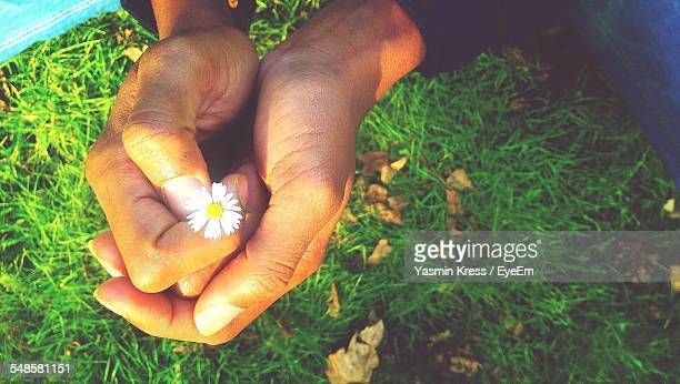 Man Holding Small Flower