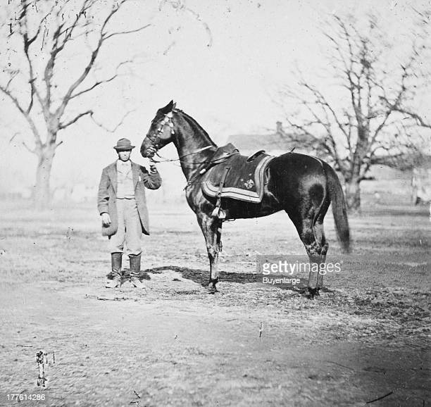 Man holding the reins of one of General US Grant's favorite horses 'Cincinnati' at City Point Virginia