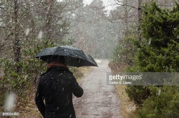 Man holding umbrella walks under the snow in forest
