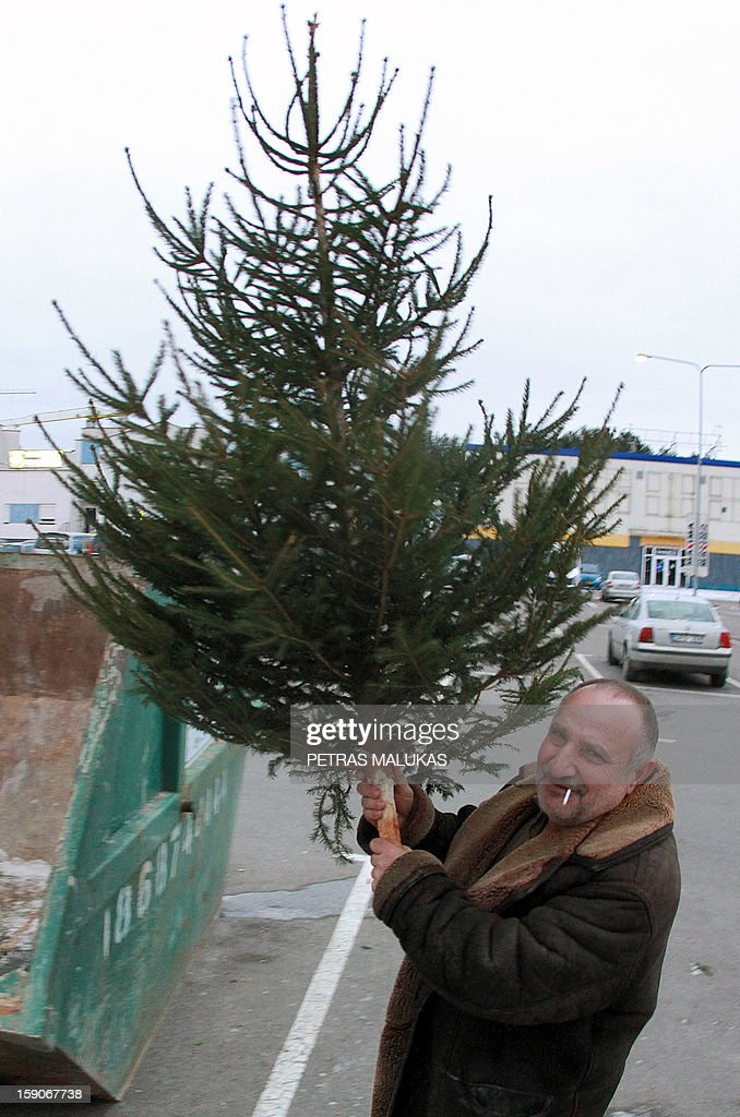 A man holds a Christmas Tree in Vilnius, Lithuania on January 7, 2013. Having brought joy to Lithuanian families over the holidays, Christmas trees will now warm them through the rest of winter after being converted into biofuel.