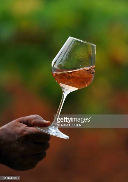 JEANNEAU A man holds a glass of rose wine on August 28 2012 at the Chateau SainteMarguerite vineyard in La LondelesMaures France is the world's first...