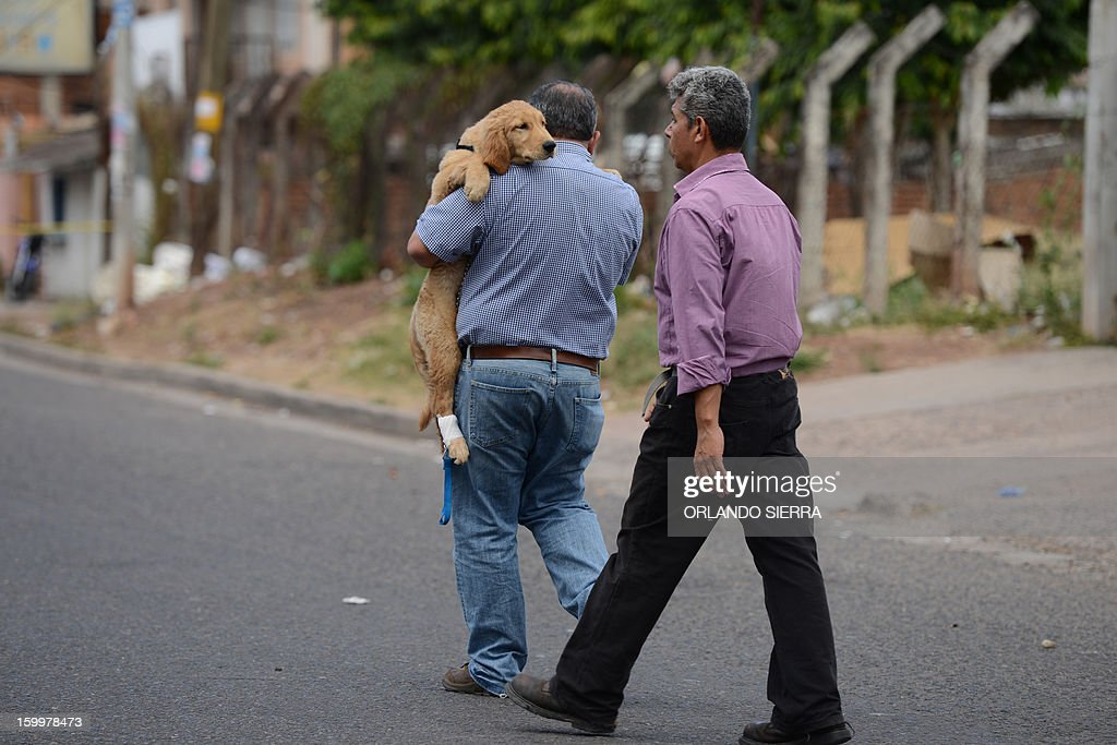 A man holds a hurt dog in his arms in the crime scene where its owner, an Architect, was shot dead in Tegucigalpa, on January 24, 2013. According to Honduran Human Rights organizations, there were 20.515 violent deaths in the last three years in the country. AFP PHOTO / Orlando SIERRA
