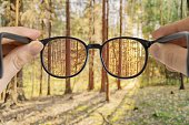 Man holds glasses in hands. View through eyeglasses on forest.