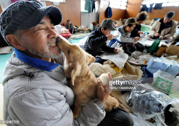 A man holds his dog at an evacuation center for tsunami suvivors in Ishinomaki in Miyagi prefecture on March 20 2011 The number of people confirmed...