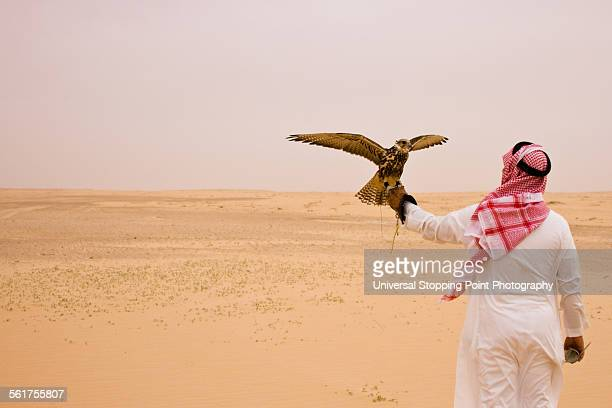 Man Holds Hunting Falcon in Desert