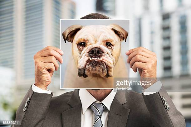 otis the bulldog. man holds picture of bulldog in front his face otis the s