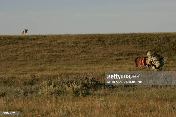Man Hunting Antelope In A Field