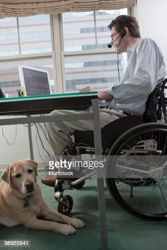 Man in a wheelchair with a headset working at desk in a home office with a service dog : Stock Photo