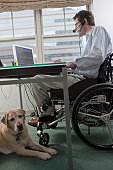 Man in a wheelchair with a headset working at desk in a home office with a service dog