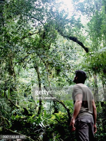 Man in jungle looking upward, low angle view : Stock Photo