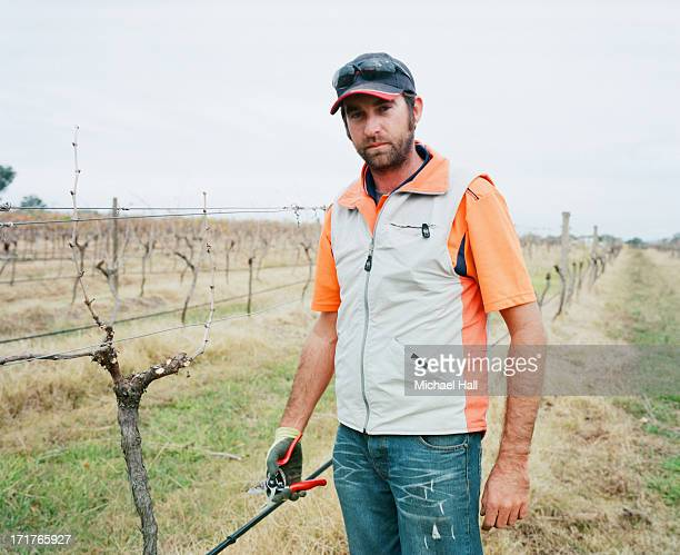 Man in vineyard looking at camera