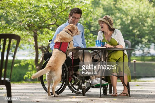 Man in wheelchair with spinal cord injury sitting at cafe with pregnant wife talking to the service dog : Stock Photo