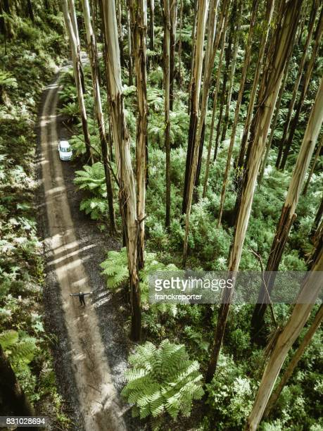 man inside the yarra ranges forest