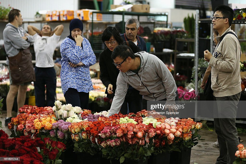 A man inspects flowers on display during Valentines Day at Sydney Flower Market on February 14, 2013 in Sydney, Australia. Due to an unusually hot January in Australia an increasing number of roses have been sourced from South America and Africa to ensure Valentines supplies don't run out.
