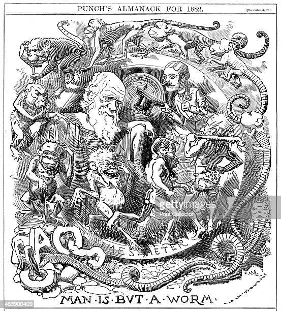 'Man is but a Worm' cartoon from Punch showing evolution from worm to man watched by Charles Darwin London 6 December 1881 the year in which Darwin...