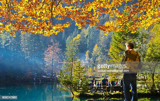 A man is fishing under a autumn/fall tree with yellow leaves at the blue lake / Blausee in Canton Bern in Switzerland