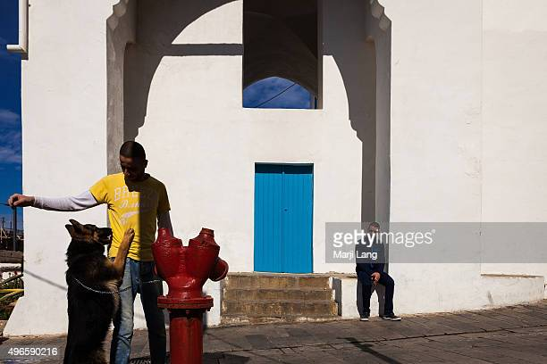A man is playing with a dog while another man is watching sitting by a bright building in a sunny day in Acre northern Israel