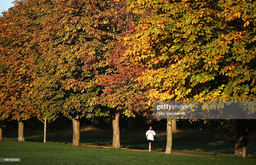 A man jogs in Hyde Park on October 24, 2013 in London, England. Fine weather is expected in parts of the United Kingdom today.