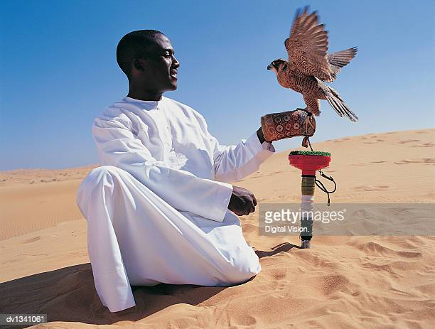 Man Kneeling in the Desert With a Falcon Flapping Its Wings and Perching on His Hand