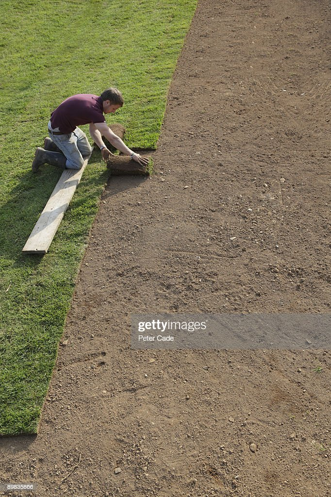 Man laying grass lawn over dirt : Stock Photo