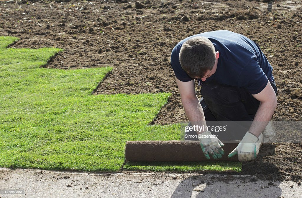 Man laying new turf on bare soil : Stock Photo