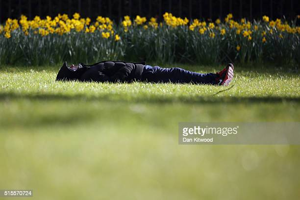 A man lays in the sunshine near daffodils in St James's Park on March 14 2016 in London England Great Britain is to enjoy several days of mild...