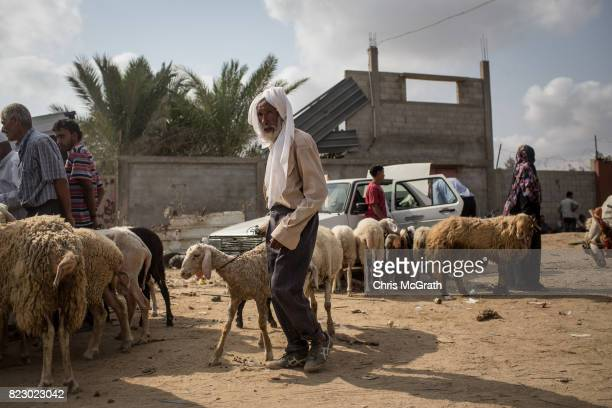 A man leads a sheep through an animal market in AlBureji on July 20 2017 in Gaza City Gaza For the past ten years Gaza residents have lived with...