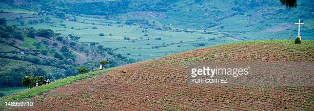 A man leads his donkey followed by his wife dressed in religious clothes over the crest of a cultivated hill on July 18 2012 at Nueva Jerusalen...