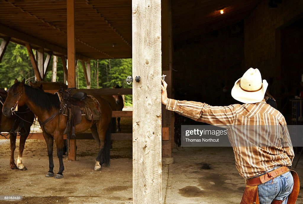 Man leaning against post in barn with horses. : Stock Photo