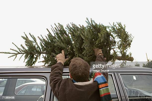 Man loading Christmas tree onto car roof