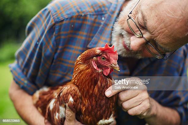 Man looking after his pet chicken