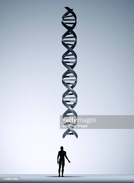 Man looking at a giant DNA helix