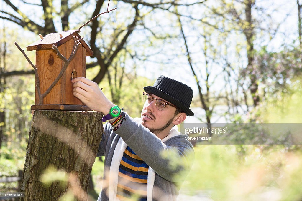 Man looking at bird house : Stock Photo