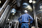 Man looking at brewery vats