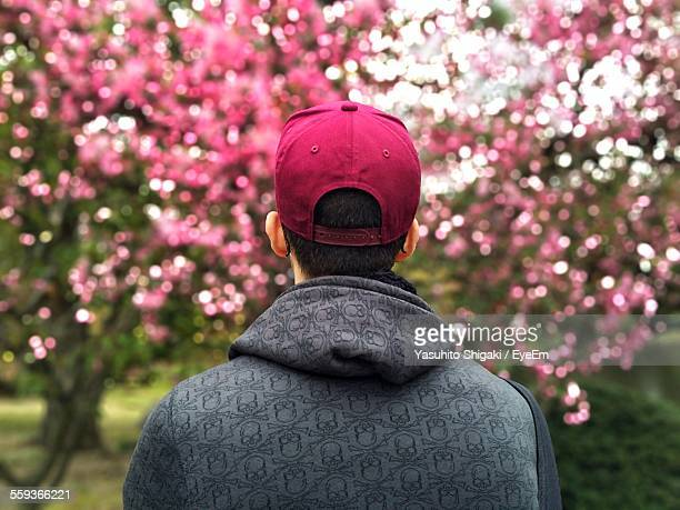 Man Looking At Cherry Blossoms In Garden