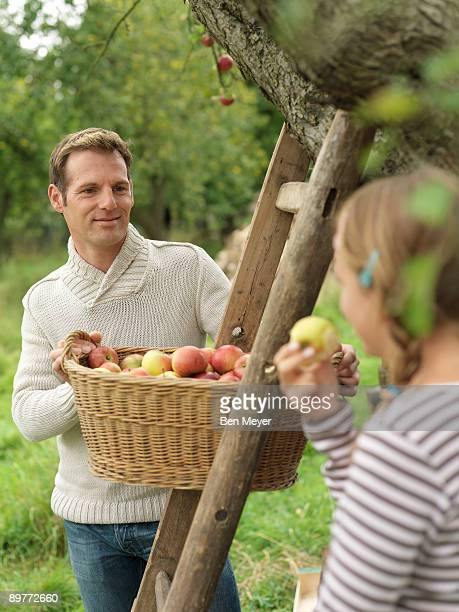 Man looking at girl while picking apples