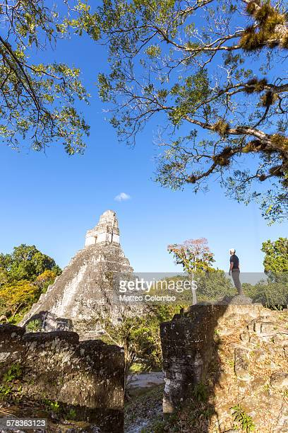 Man looking at mayan temple, Tikal, Guatemala